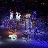 Запалване светлините на градската коледна елха в Благоевград